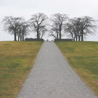 5 choices to make around Habits