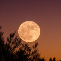 My frustration with the 'SUPERMOON'